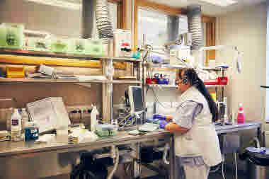 Biomedicinsk analytiker på Gävle sjukhus mars 2021. BMA skär i vävnader tunt för att de sedan ska kunna analyseras. Dikterar in vad som sker.