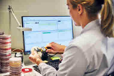 Biomedicinsk analytiker på Gävle sjukhus mars 2021. BMA vid dator och skrivbord och analyserar odlingar av urinvägsinfektioner.