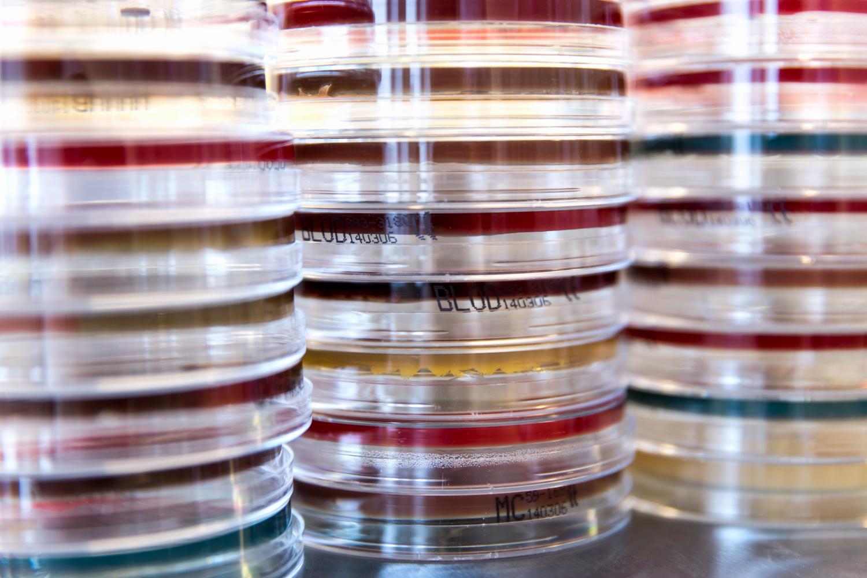 Unilabs, laboratorium, biomedicinska analytiker