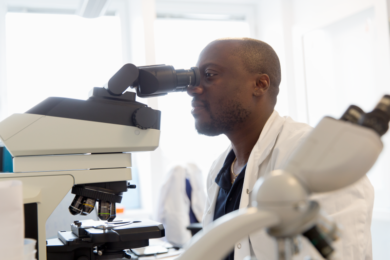 Biomedicinsk analytiker tittar i mikroskop.